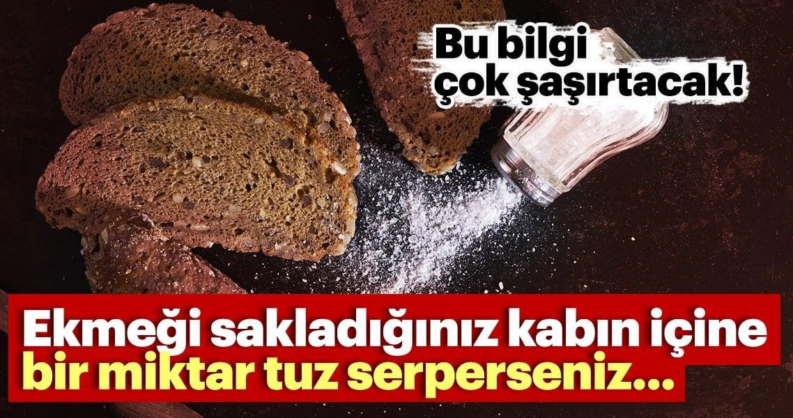 Ekmeği gizlediğiniz kabın içine bir ölçü tuz serperseniz… Bu bilgi çok donakaltacak!