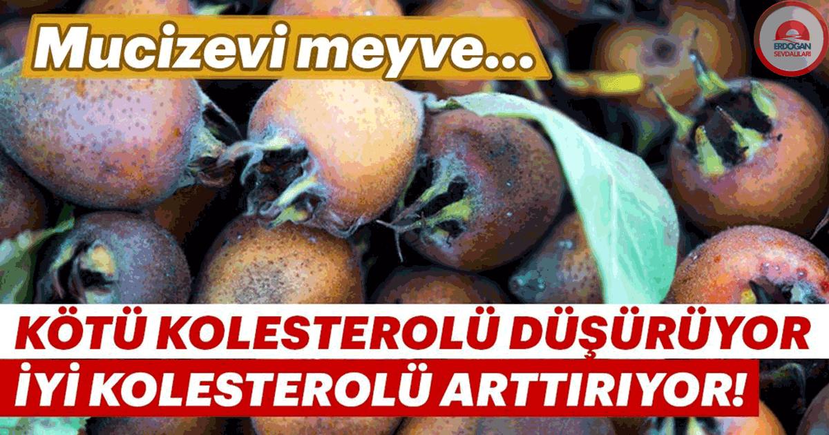 Makûs kolesterolü düşürüyor iyi kolesterolü çoğaldırıyor!