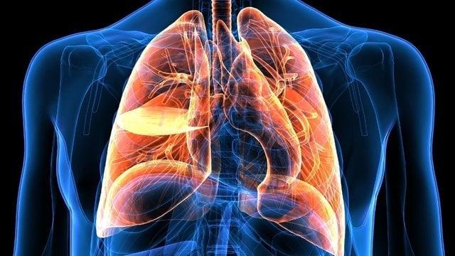 Akciğerleri 3 günde arınan usul