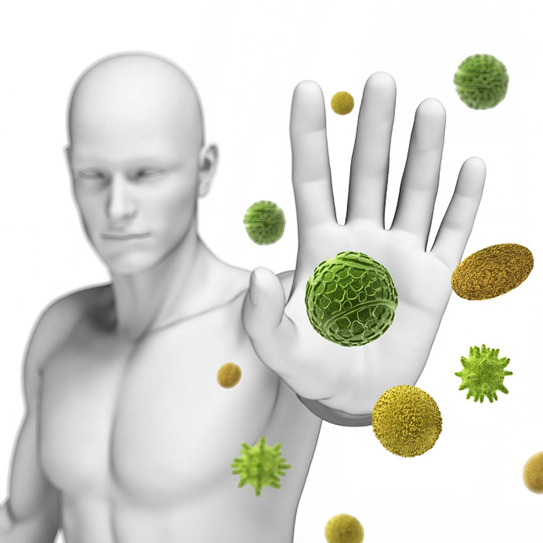 Bağışıklığınızı kuvvetlendirecek yiyecekler