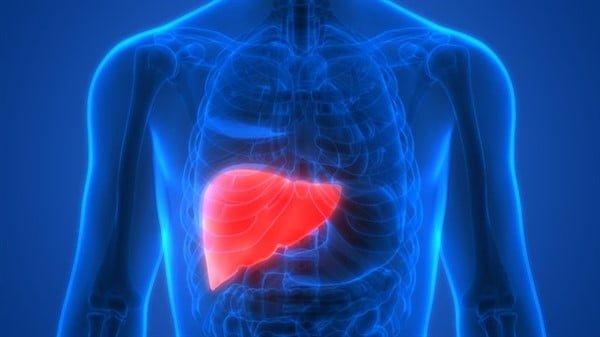 Karaciğeri yenileyen 5 besin