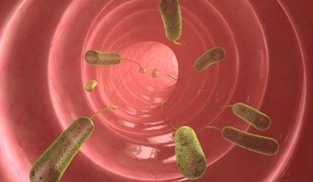 Vücudunuzda parazit olduğunu gösteren kritik işaretler