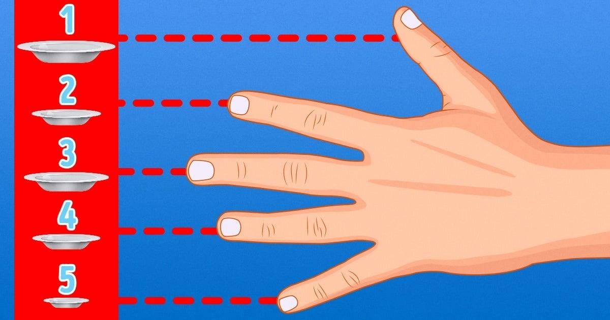 Ellerinizin Büyüklüğü Ne Kadar Yemeniz Gerektiğini Söylüyor